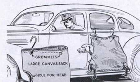 Dog Car Sack