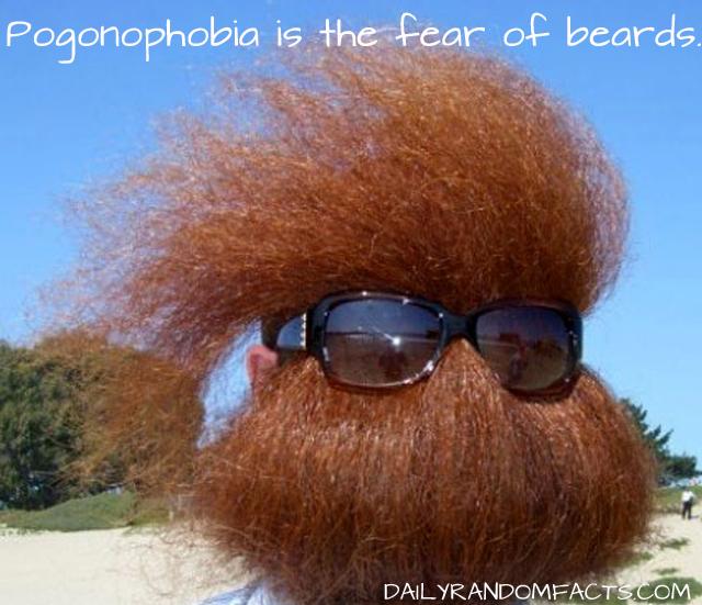 Pogonophobia