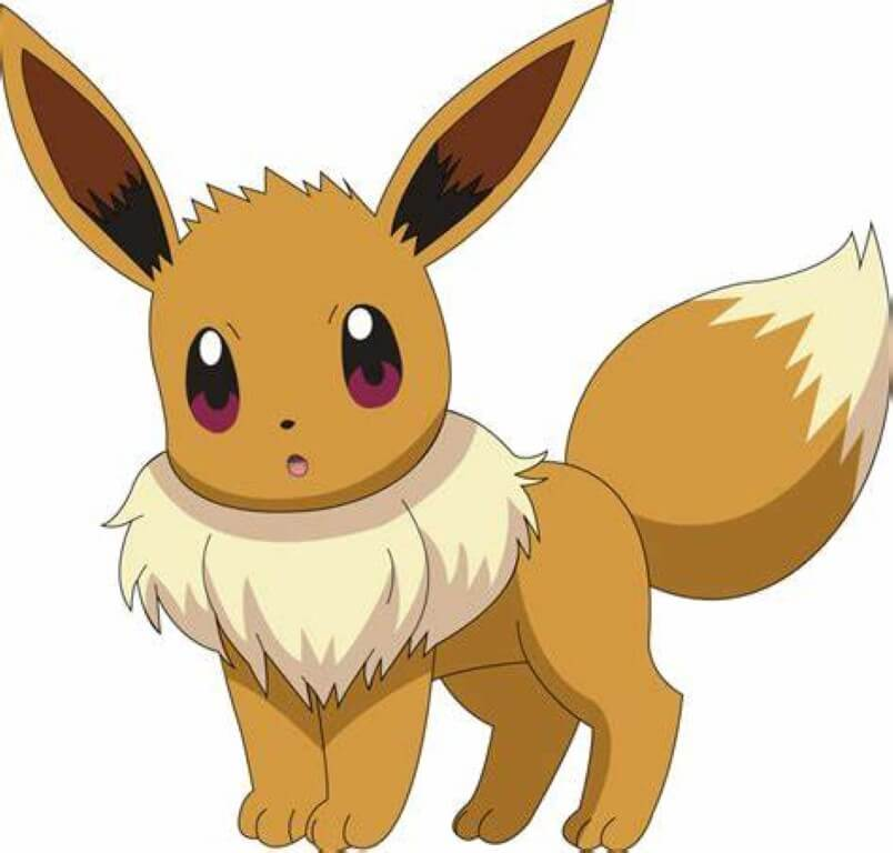 Eevee Cat Pokemon