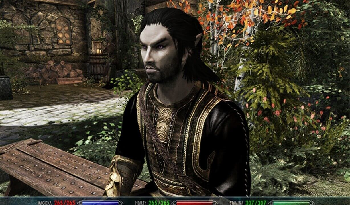 Skyrim character builds Vampire Build
