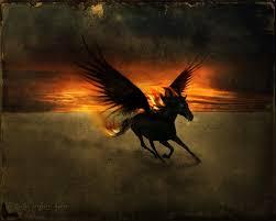 black pegasus Best minecraft horse